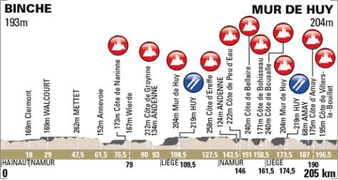 La Flèche Wallonne 2013 profile