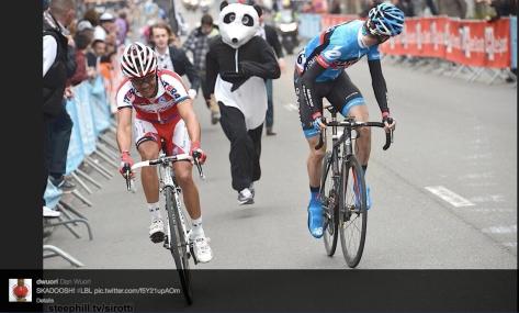 LBL Panda running