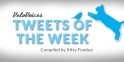 TweetsofWeek2