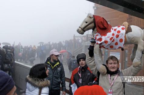 Giro Stage 14 polka dot horse CREDIT DAVIDE CALABRESI
