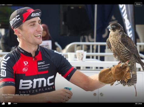 Phinney Dubai falcon