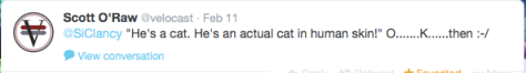 Velocast an actual cat