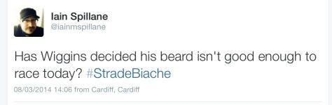 SB Wiggins beard