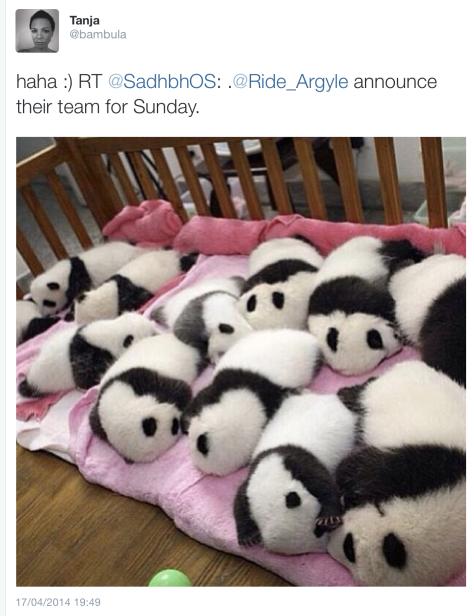 AG pre-race pandas