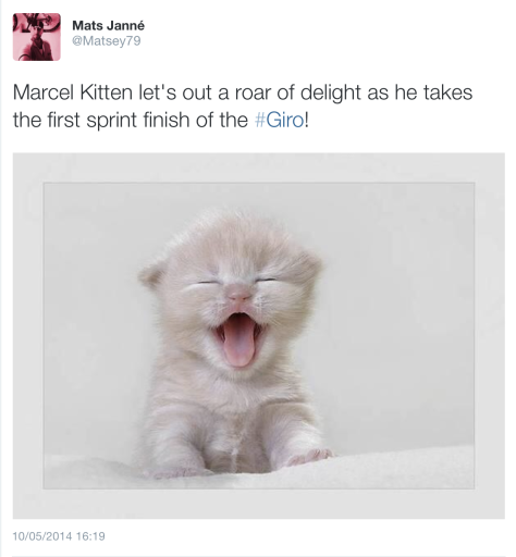 Giro Kittel kitten