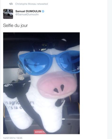 G cow selfie