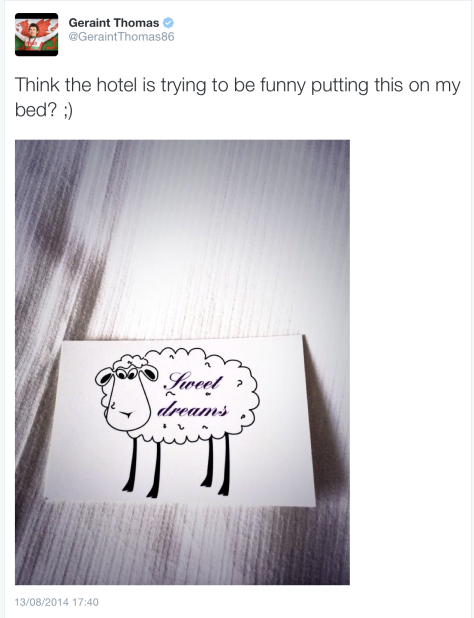 Thomas sheep 1