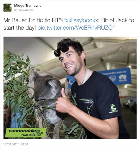 TDU A Bauer koala