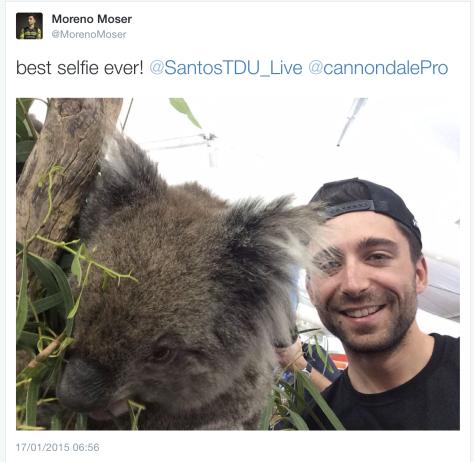 TDU A Moser koala