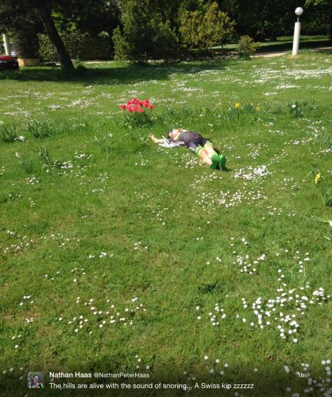 G Haas grass