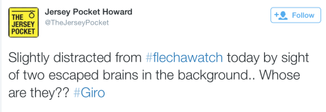 Flecha brains 1