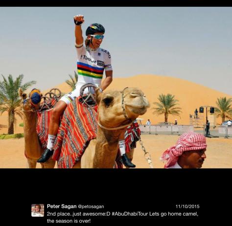 Sagan camel