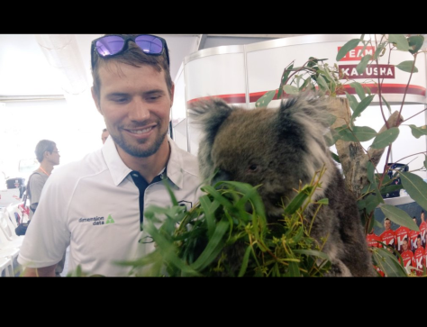 TDU kanga koala 2