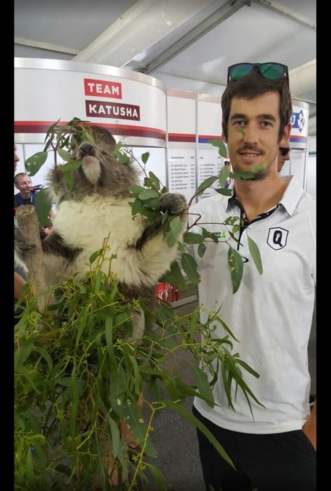 TDU kanga koala