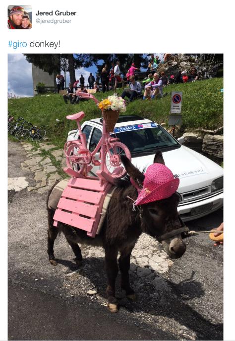 Giro donkey